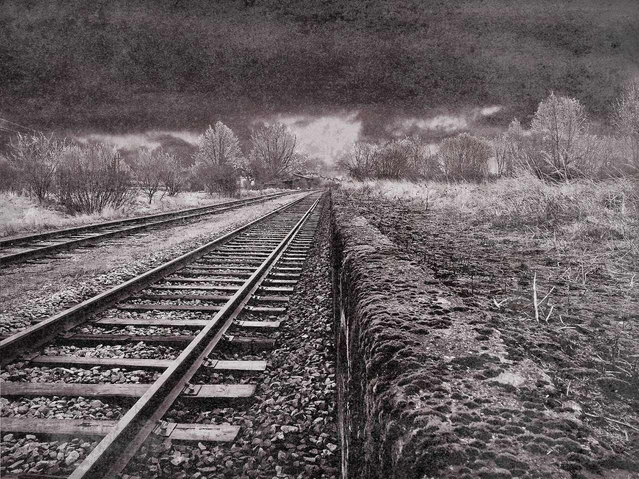 wp15-train-track